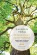 Yoshifumi Miyazaki boeken