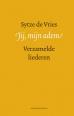 Sytze de Vries boeken