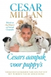 Cesar Millan boeken