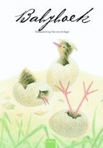 Babyboek - Voor wie wil vliegen