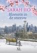 Sarah Jio boeken