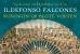 Ildefonso Falcones boeken