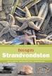 Rykel de Bruyne, Adriaan Gmelig Meyling boeken
