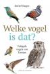 Detlef Singer boeken