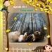 Candy Jadoul boeken