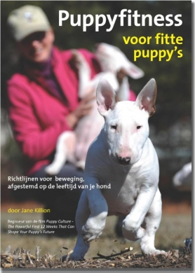 Puppyfitness voor fitte puppy's